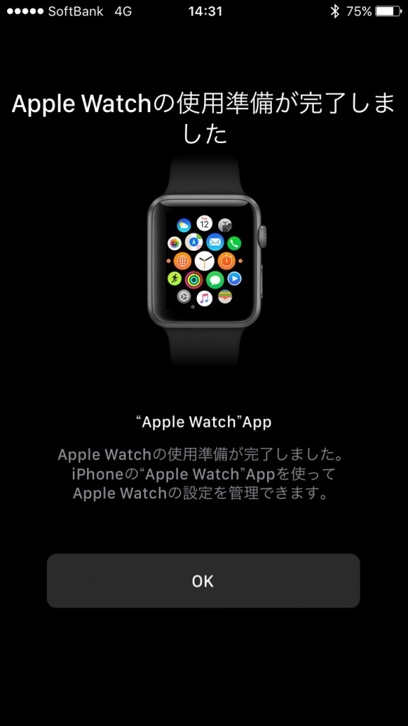 Apple Watch setting-17