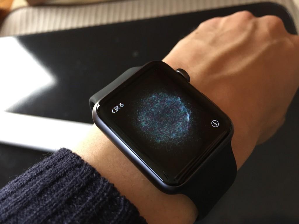 Apple Watch setting-7
