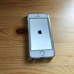最近iPhone SEが突然電源オフ→充電→すぐ100%→充電やめるとすぐ電源オフを繰り返してやばい件