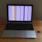 【脆すぎる】MacBook 12を落としたら時間差でディスプレイがおかしなことになった件