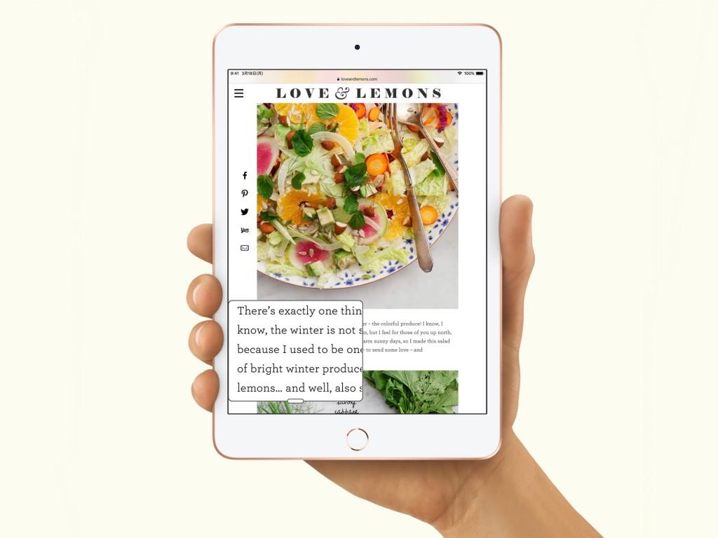 iPadmini5-2